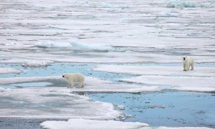 Global Warming and Its Effect on the Shipping Industry
