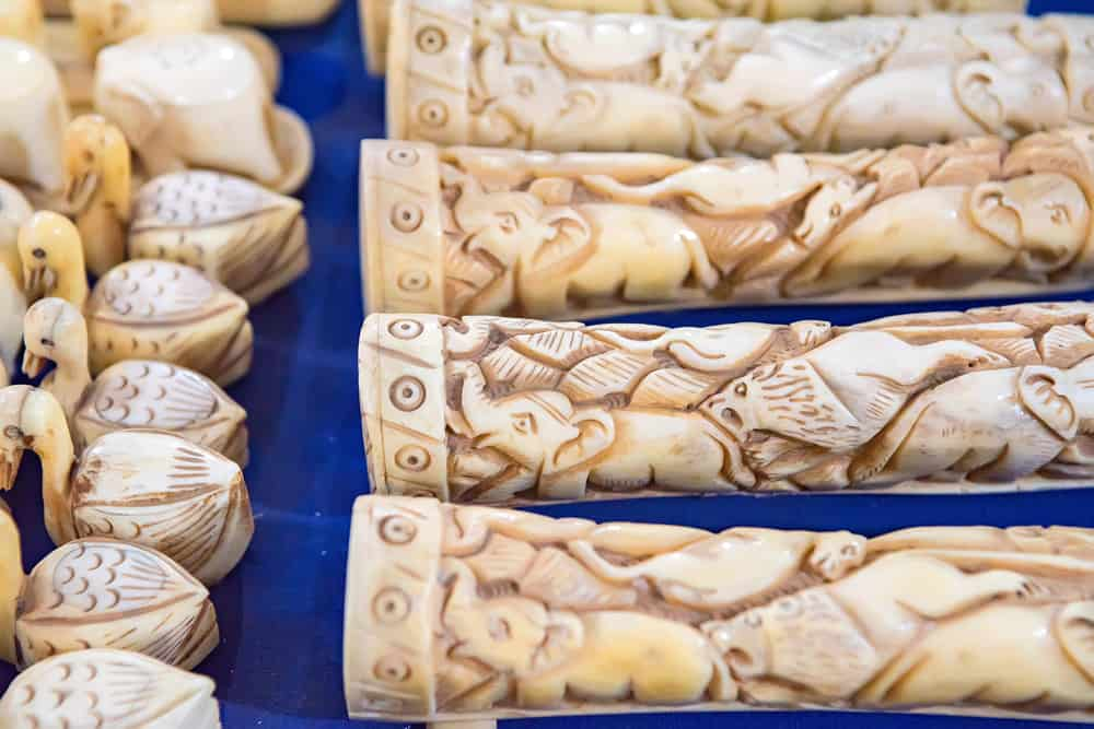 The Illegal Ivory Trade – What Role Does the Shipping Industry Play?