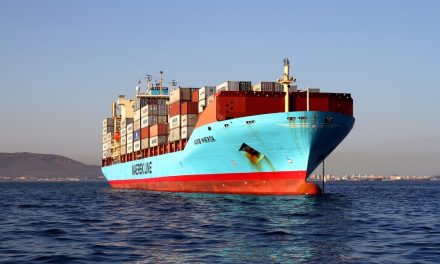 After COVID-19 Lockdowns: Why Will the Containerized Shipping Industry Recover Fast?