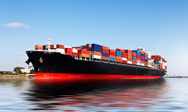 Overview of the Top Six Ocean Carriers in Shipping